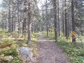 Отчёт о прохождении пешеходного туристского спортивного маршрута 1 категории сложности по Южному Уралу